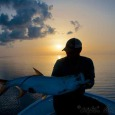 Sunset tarpon action.
