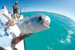 Marquesas Keys Permit Fishing