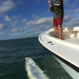 Tarpon with Capt. Kyle Kelso