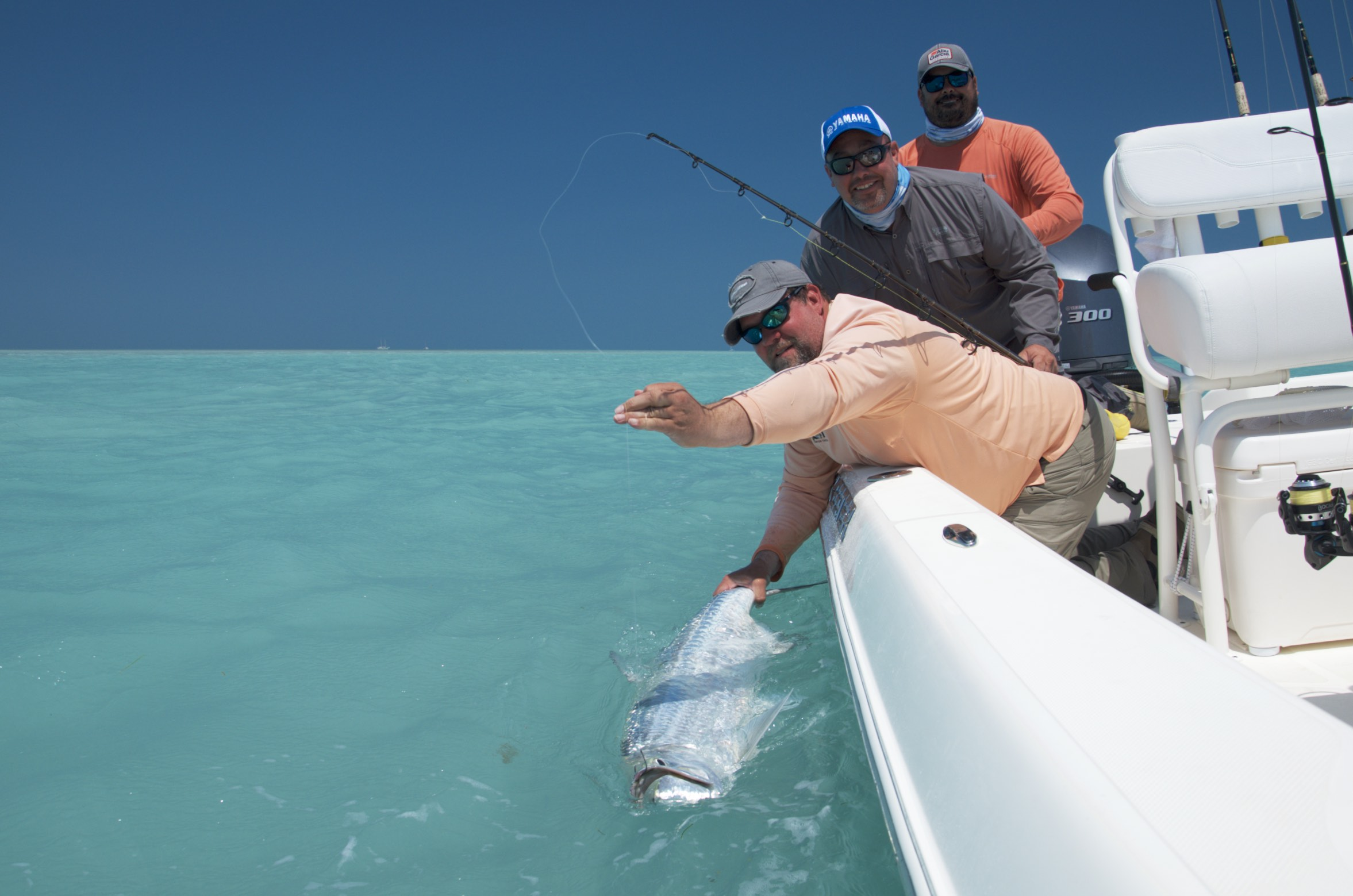 Key west fishing charters backcountry tarpon shark for Key west fishing charters