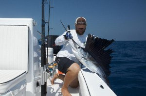Sailfish caught in Key West