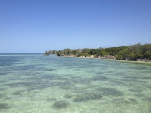 Marquesas keys water